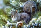 christmas stories squirrel
