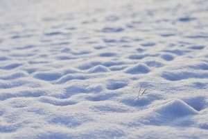 Snow footprints stories for kids