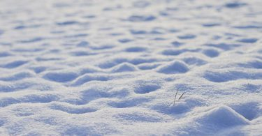 Snow footprints stories for kids