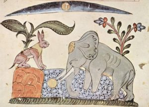 Panchatantra stories brahmin's dream