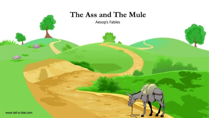 The Ass and The Mule aesop's fables