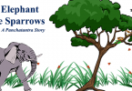 The-Elephant-and-the-Sparrows panchatantra stories from india