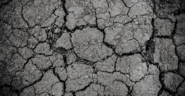 parched and dry earth poems