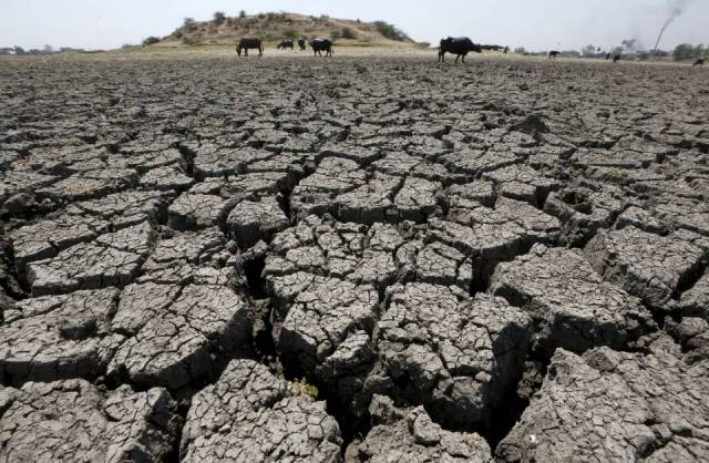 Desert Drought in Marathwada
