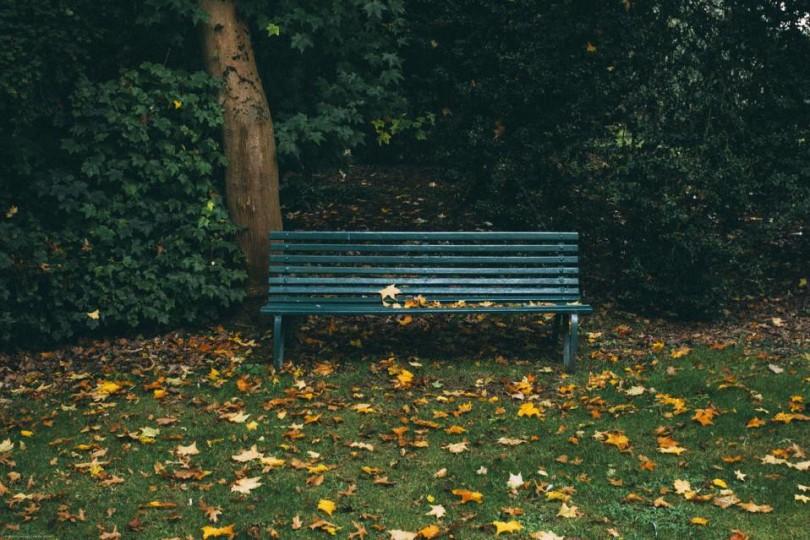 romantic story empty park bench