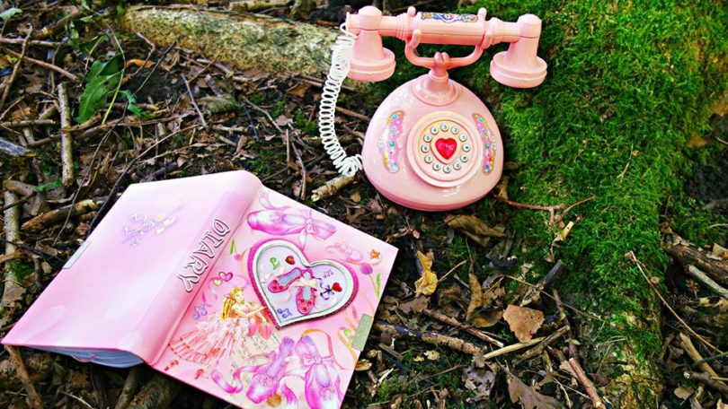 Diary and Telephone in grass outside