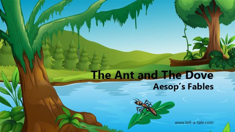 The ant and the dove Aesop's Fables