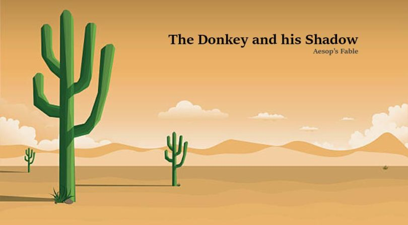 donkey and the shadow